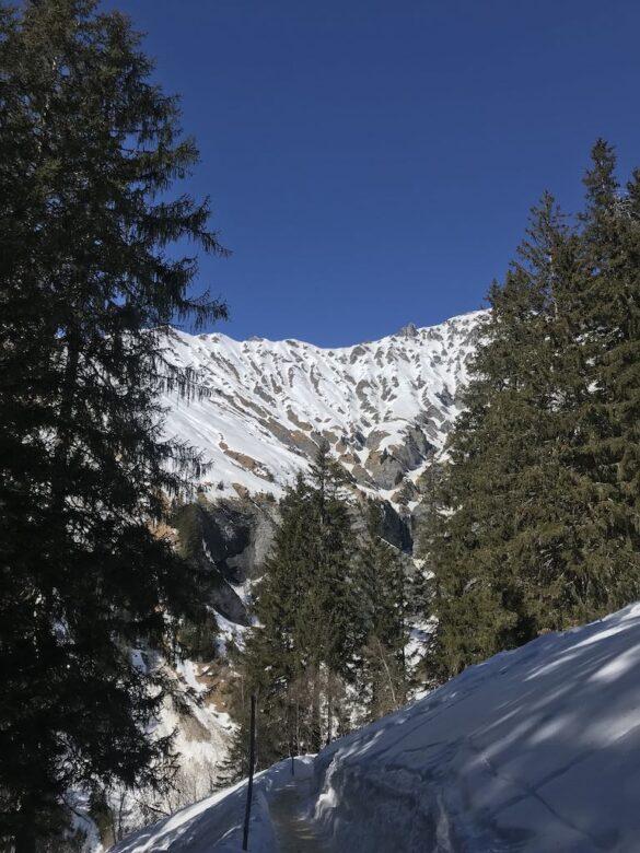 Abschnitt auf dem Winterwanderweg