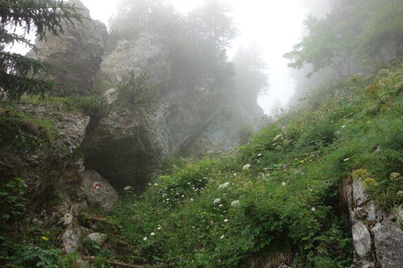 Steiler Wanderweg von Gamplüt zur Schöferhütte