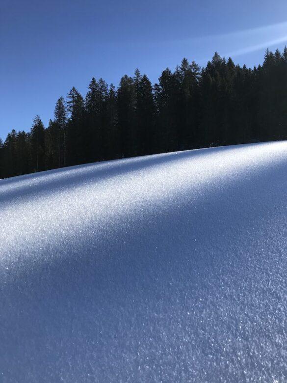 Detail Schnee bei Bawangli
