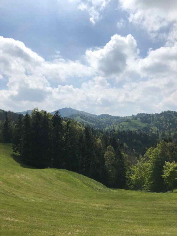 Landschaft mit Hörnli