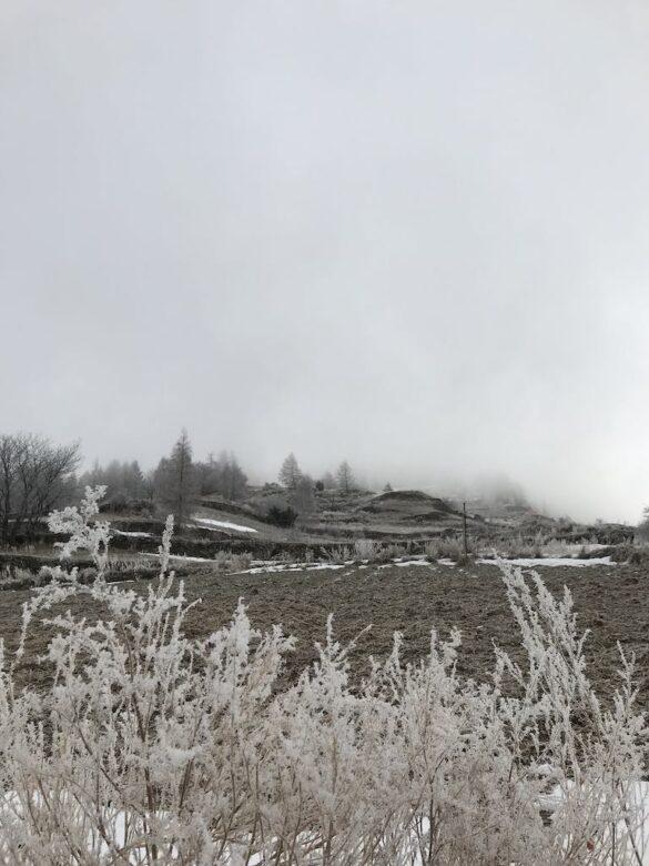 Landschaft mit Reif