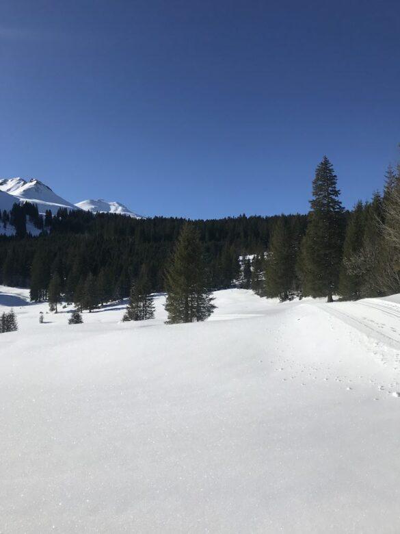 Schneelandschaft bei Bawangli Stoos