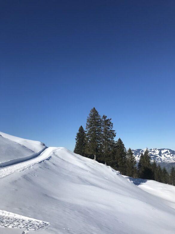 Winterwanderweg bei Chruteren Stoos