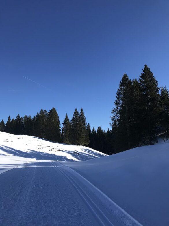 Winterwanderweg von Stoos nach Bawangli