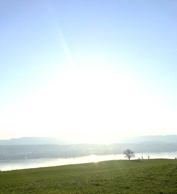 Panorama vom Wanderweg
