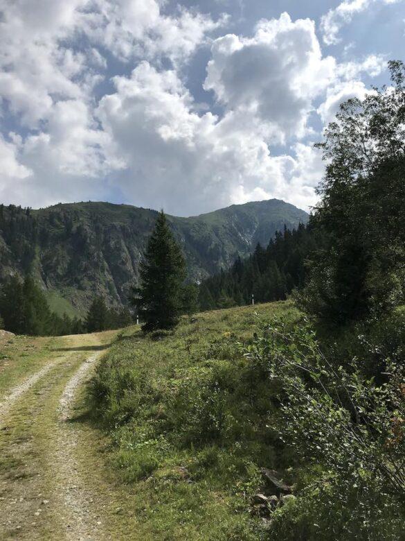 Wanderweg Richtung Ulrichen