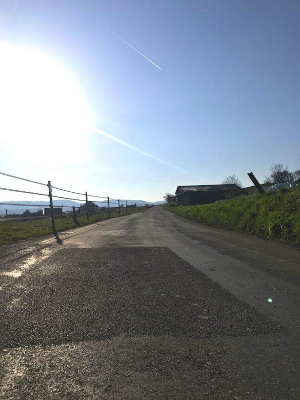 Wanderweg auf Strasse oberhalb Zürichsee