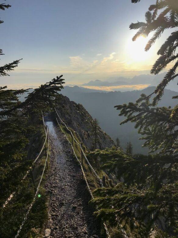 Wanderweg im Morgenlicht