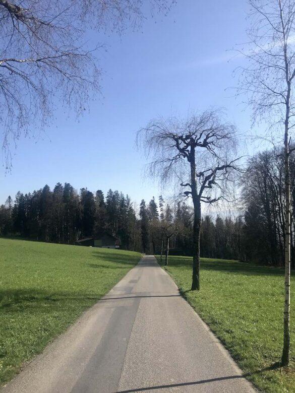 Wanderweg nach Meilen