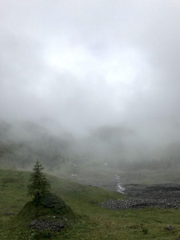 Nebel und Nieselregen