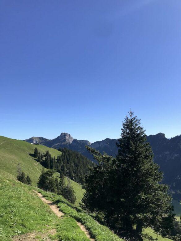 Wanderweg bei Alp Sigel