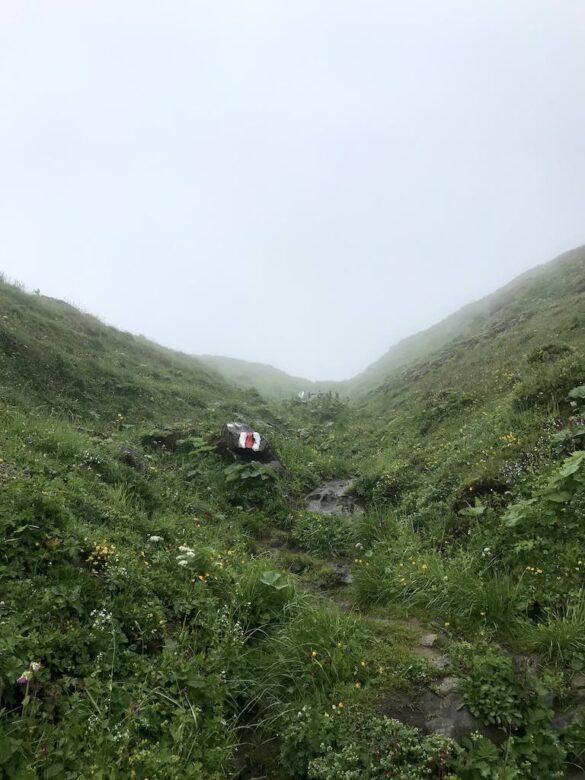 Bergwanderweg durch Wiesen