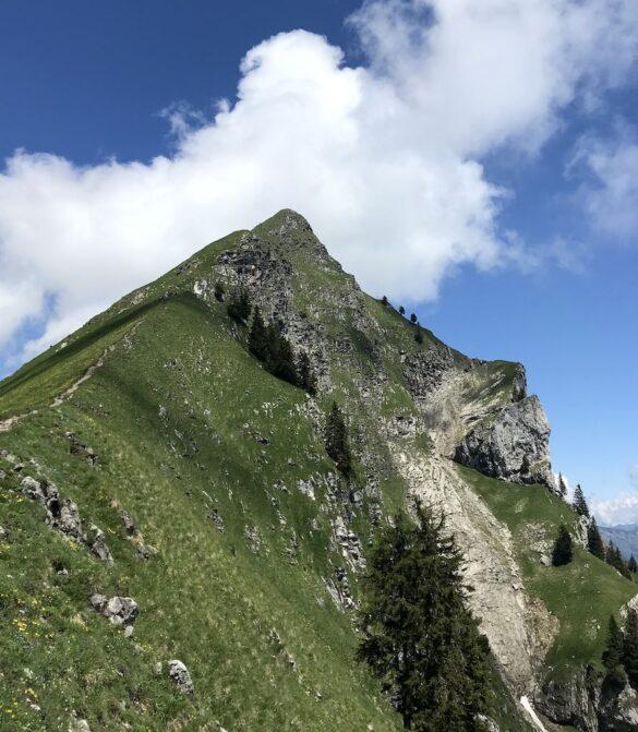 Bergwelt beim Augstmatthorn