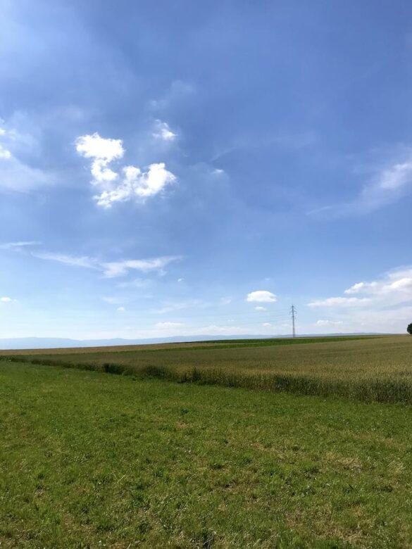 Landschaft vor Murten