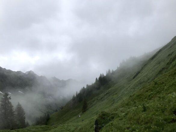 Nebel und Panorama