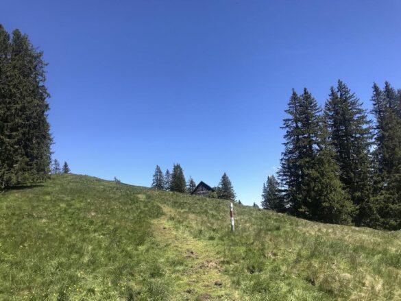 Bergwanderweg durch Alpweiden