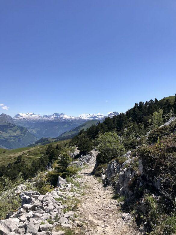 Bergwanderweg mit Panorama