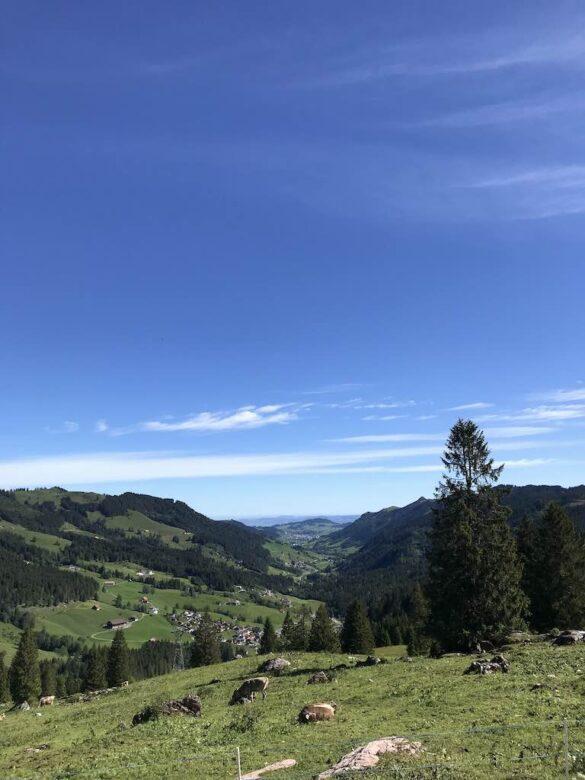 Panoramabild ins Alptal