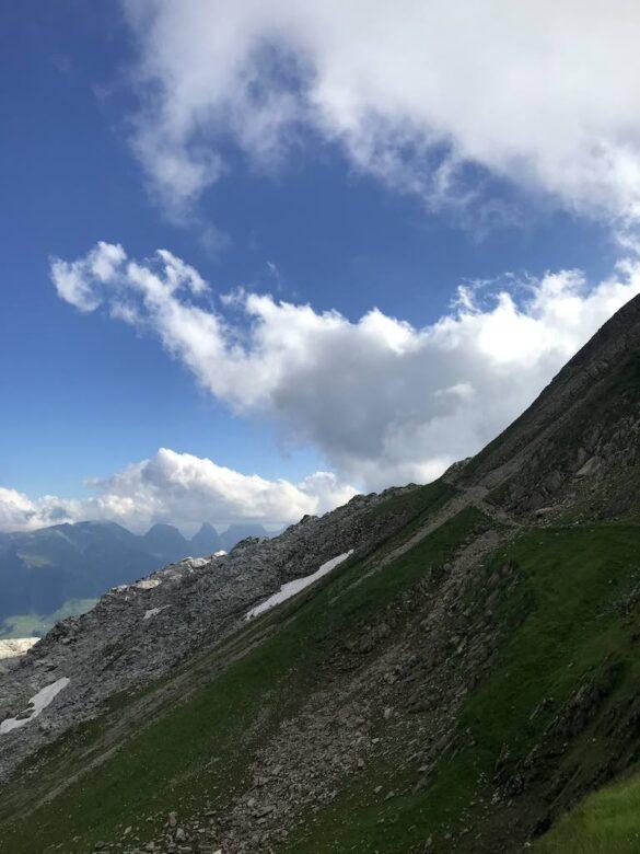 Die Alp Tierwis