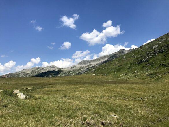 Alpwiese auf Stelliboden