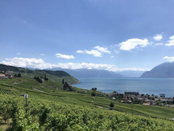 Aussicht bei Cully im Lavaux
