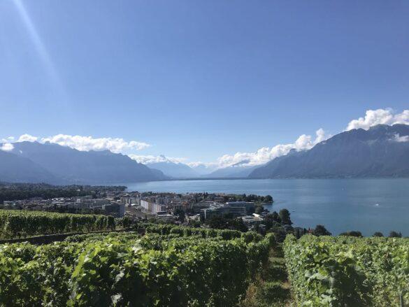 Panoramabild von Vevey am Genfersee