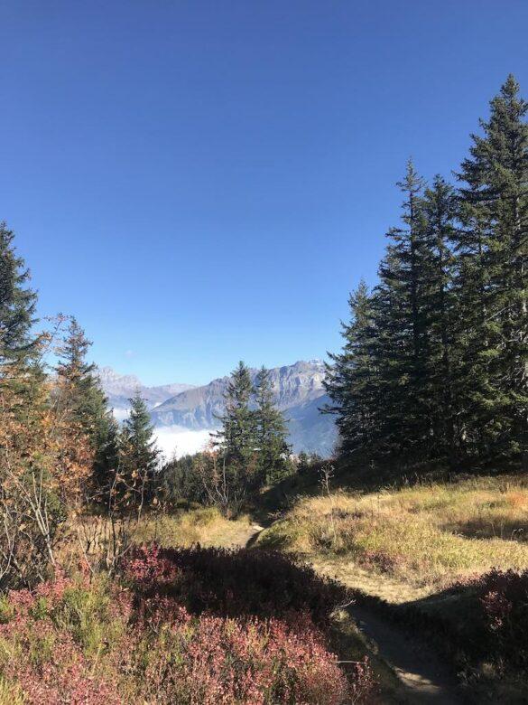 Herbststimmung auf dem Wanderweg