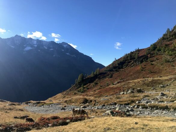 Herbstliche Landschaft bei der Lauchernalp