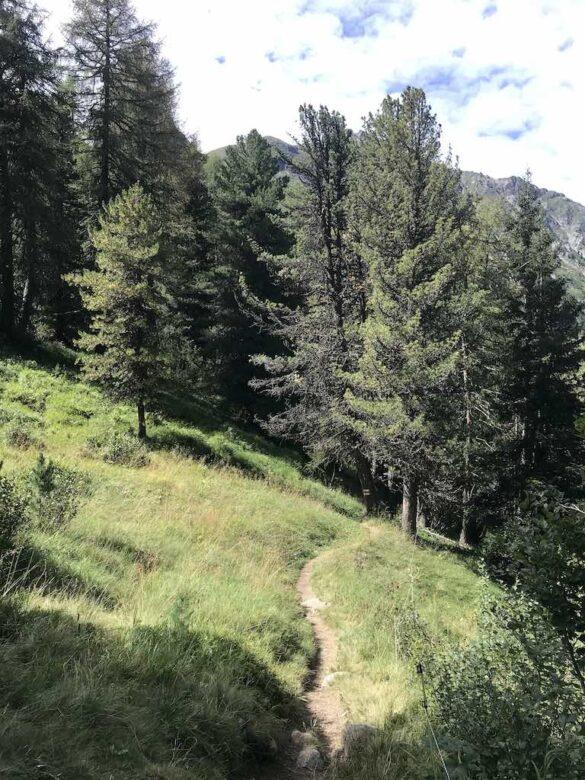 Wanderweg zum Lai Palpuogna