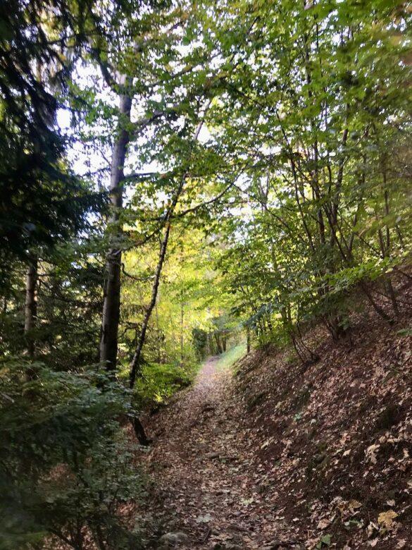 Wanderweg bei Rasa