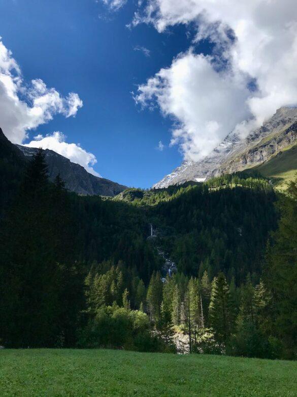 Berg- und Waldlandschaft im Gasterental