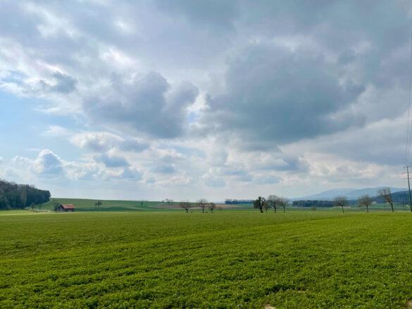 Landschaft bei Baulmes